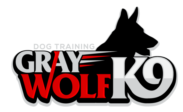 Gray Wolf K9