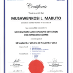 Musawenkosi Mabuto